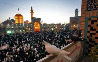 نماهنگ « کبوتر دلم » با صدای محمد جعفر متقین