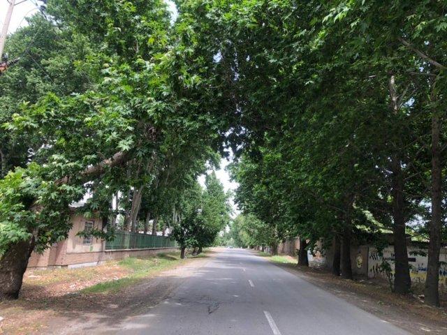 قیمت زمین در سهیلیه
